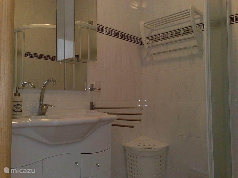 De badkamer beschikt over een luxe wastafelmeubelement met spiegel en verlichting. beide zijden 4 handdoekhangers Een wasmand, kapstok/handdoekenrekje. prullenbakje, weegschaal en...