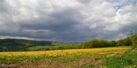 Spring in the Morvan
