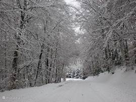 Montpensy in the winter