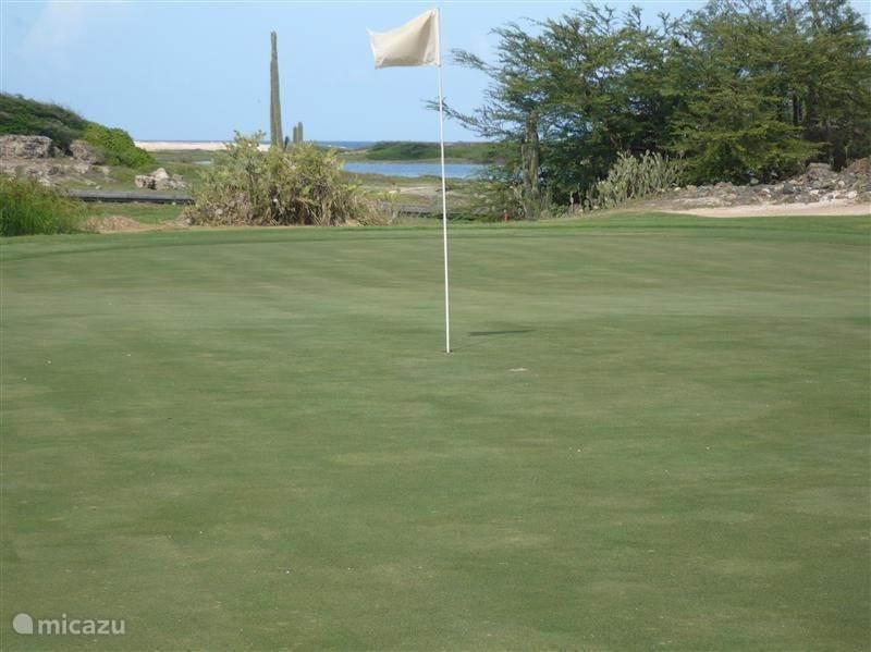 Activiteit: Golf
