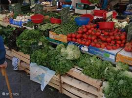 The various markets are really worth a visit. Every Thursday you can visit the market in Anduze, but also the smaller villages in the area have their weekly markets where all sorts of regional products for sale.
