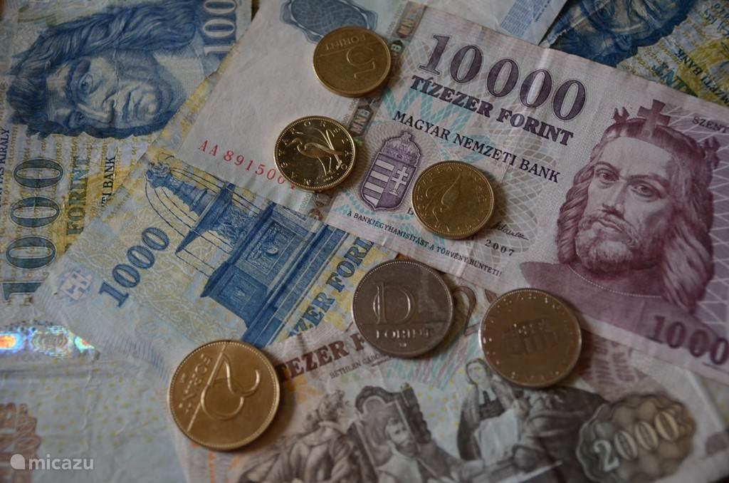 De Hongaarse forint