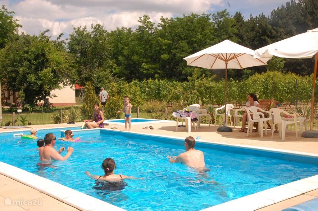 Op het naastgelegen terrein kunt u heerlijk relaxen in en om het zwembad. De kleintjes kunnen lekker spartelen in het kinderbadje. Dit badje is op het filtersysteem van het grote zwembad aangesloten. De baden worden verwarmd met zonnepanelen en zijn daarom al vroeg in het voorjaar te gebruiken.