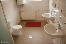 De ruime badkamer van Erzsébet tanya.