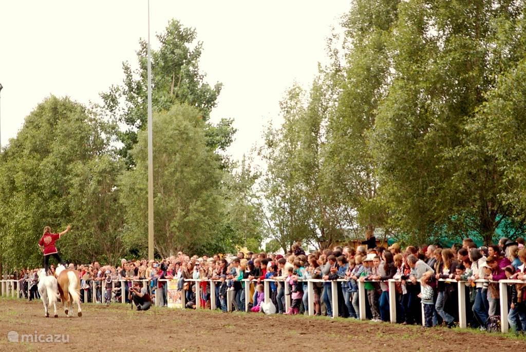 Het paardenfestival in Kunszállás trekt veel toeristen en in het dorp is het gezellig druk.