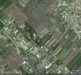 Foto vanuit Google Earth. Coördinaten:  Br 46.756396 L 19.732328 De vakantiehuizen liggen vlak bij het dorp midden in de natuur.