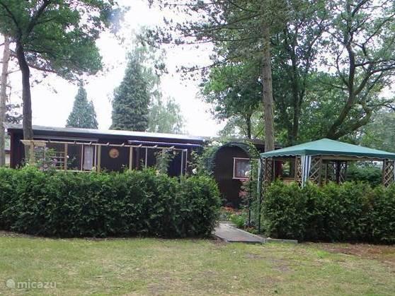 Vakantiehuis Nederland, Gelderland, Ermelo chalet Camellia