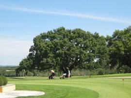 Golfcourt om de hoek