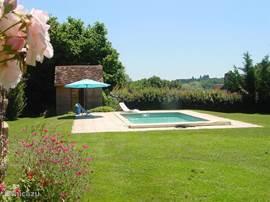 het zwembad ligt de hele dag heerlijk in de zon!