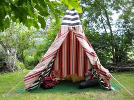 In the summer the children a wigwam in the garden