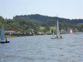Sailing, surfing or exploring the lake Lipno with the pedal? Plenty of room for everyone!