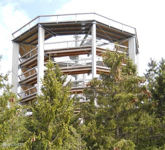 Hoog boven Kramolin-Lipno is een boomkroonpad gebouwd. Eerst lopend of met de stoeltjeslift naar boven en dan..... genieten van het uitzicht en de speelse elementen die je onderweg tegenkomt. Goed toegankelijk en geschikt voor alle leeftijden.