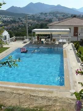 Het zwembad dat direct naast het appartement ligt.