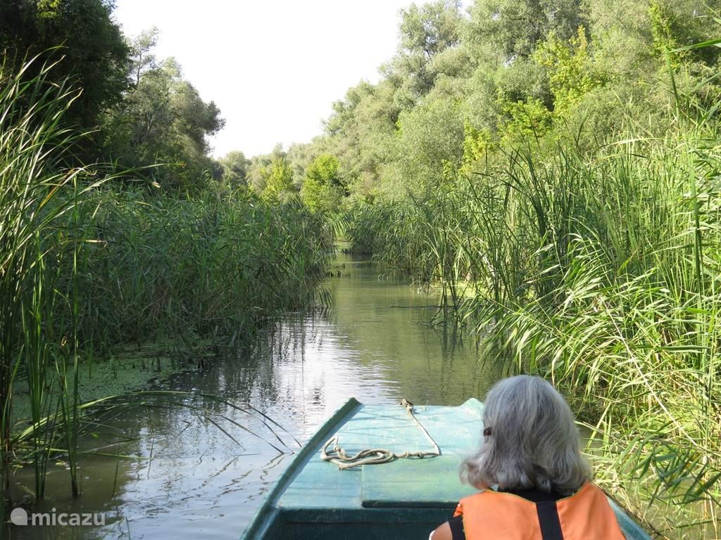varen op een zijarm van de Tisza, een oase van rust, het paradijs voor een vogelliefhebber