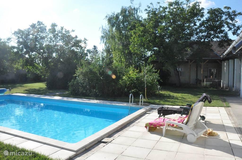 schitterend groot zwembad (10 m*5m) met glijbaan en avondverlichting in heerlijke afgesloten grote tuin met zeer veel groen