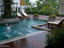 Neem een duik in ons zwembad
