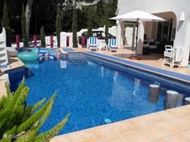Het riante zwembad met deel van het zonneterras