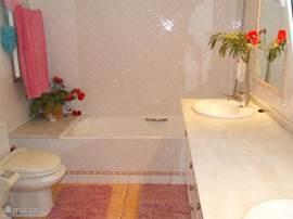 Ensuite badkamer bij de masterbedroom. Dubbele wasbak, toilet, inloopdouche, ligbad en urinoir