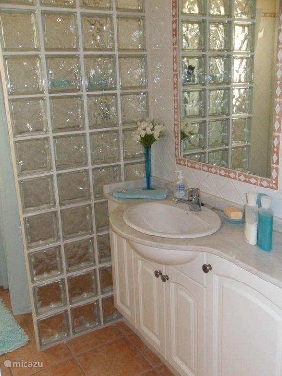 Ensuite badkamer met douche, toilet en wastafel