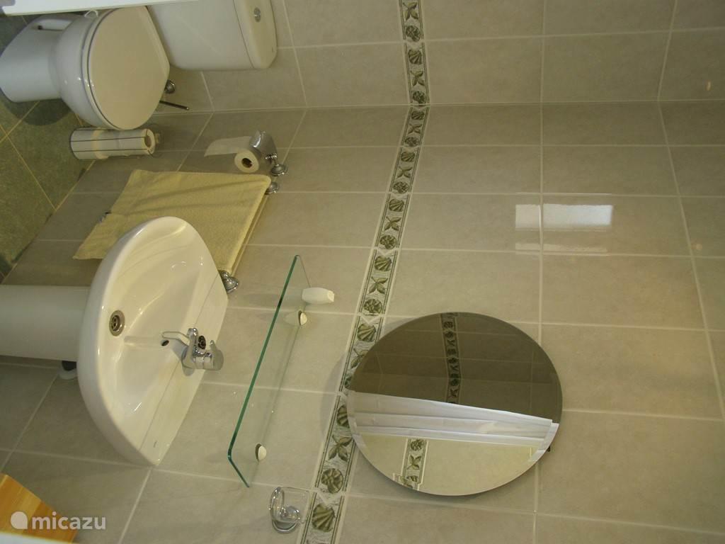 Badkamer (van slaapkamer 2) met wastafel, toilet en douche