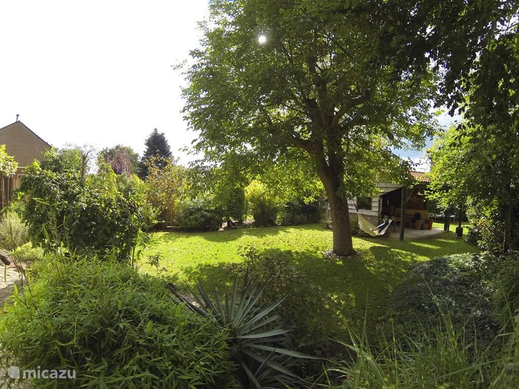 Compleet overzicht van de tuin.