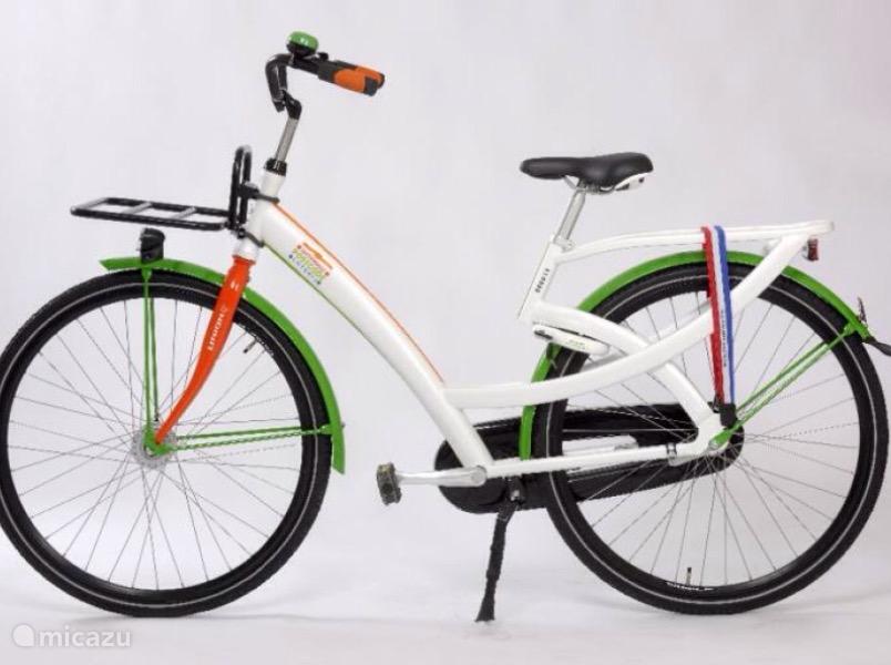 Uniek. We verhuren electrische fietsen. Heerlijk om eens door de rijstvelden te rijden.