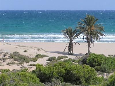 Nog vrij in juli en augustus. Rustig gelegen vakantiewoning op wandelafstand van zee en stand. Compleet ingerichte woning. Nu voor 595 euro per week.