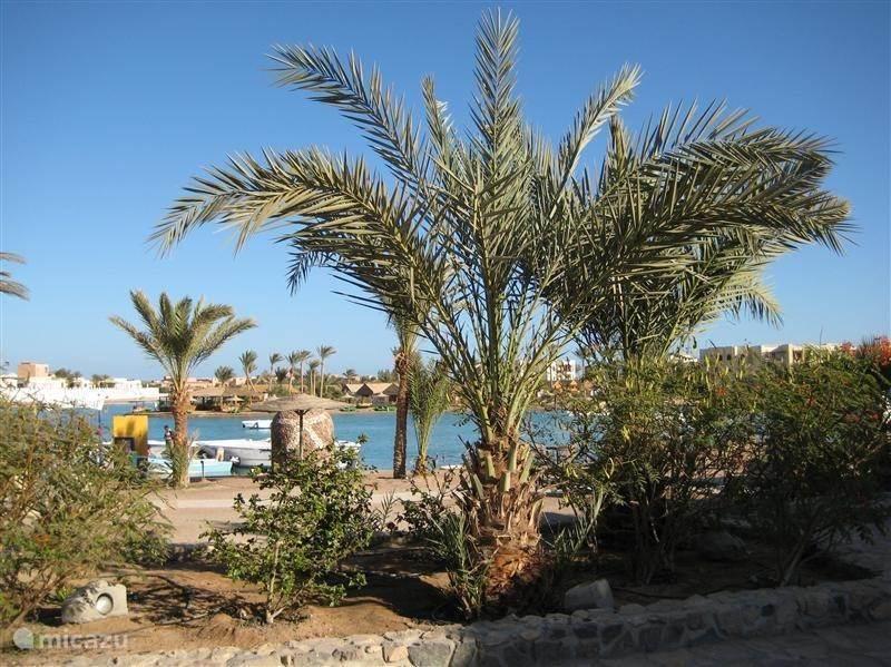 Ferienwohnung Ägypten, Rotes Meer, Hurghada Villa Grand Resort Hurgarda