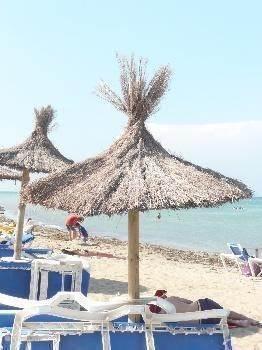 Op het strand is er voor iedereen wel iets leuks te vinden. Bedden en parasols zijn te huur, wanneer je er liever zelf niet mee wilt sjouwen.