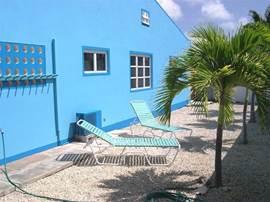 Zij tuin met palmbomen en ligstoelen om van de zon te genieten.