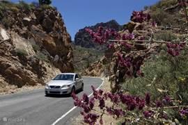 Lekker met de huurauto op pad door de bergen en langs dalen en stranden en dorpjes en.....