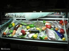 Waar je heerlijk kunt eten ( zoals verse visjes!)
