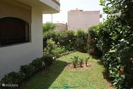 overzicht tuin linker zijgevelzijde
