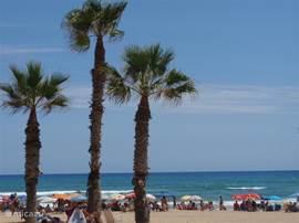 Bezoek vooral ook het strand van het nabij gelegen La Mata, met veel restaurantjes direct aan zee!