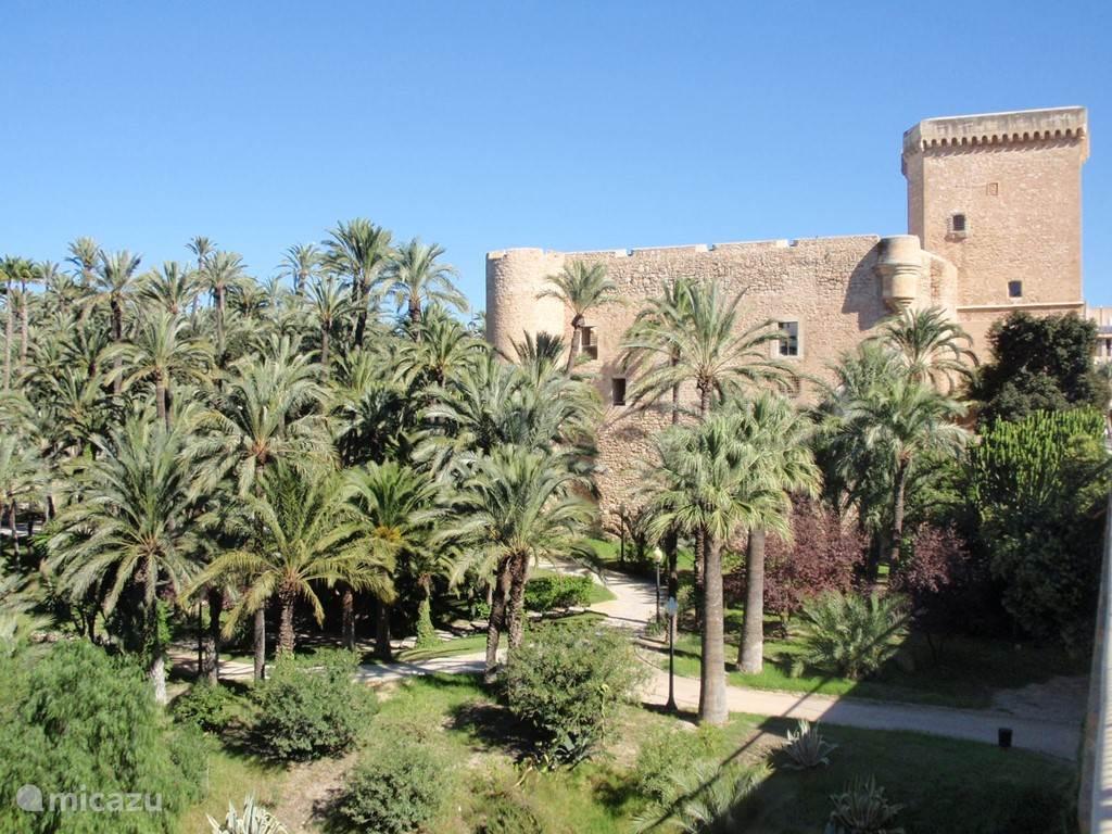 Elche, een echte palmenstad, vlakbij Rojales.