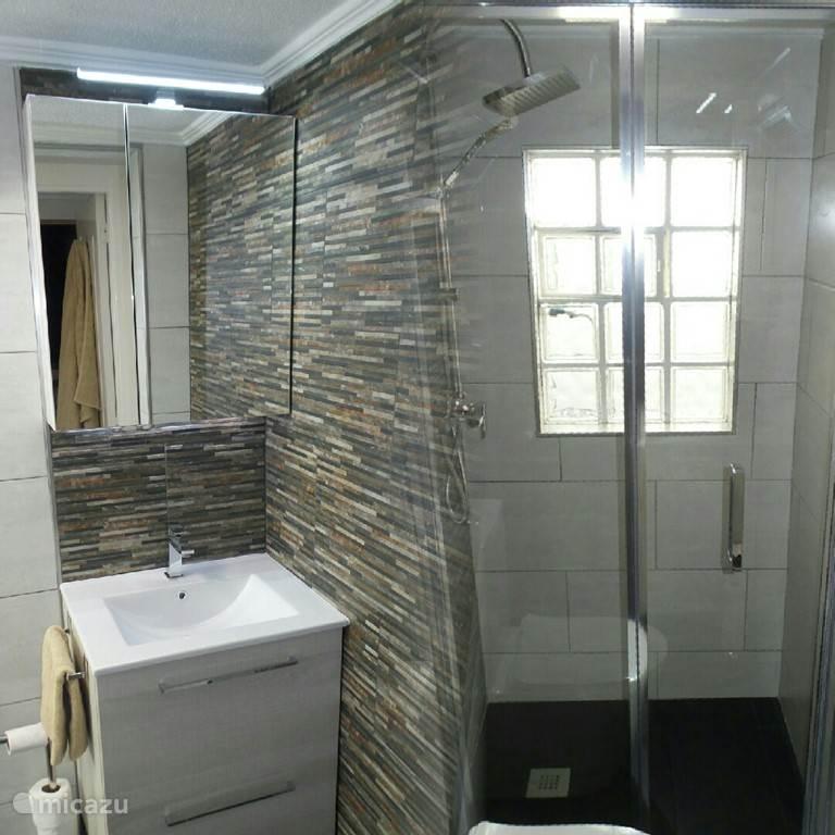Badkamer 2 met luxe douche, 2e toilet en wastafel (nieuw najaar 2016)