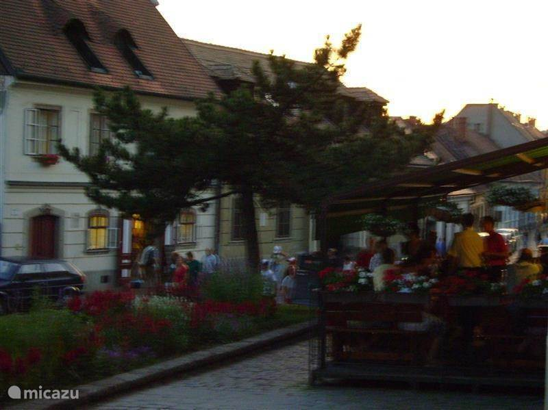 De stad Eger