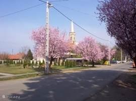dorpstraat Jászszentandrás