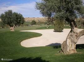 Diverse golfbanen op nog geen 10 autominuten