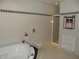 Overzicht foto van de badkamer.