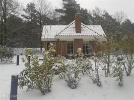 Met kerst in de sneeuw
