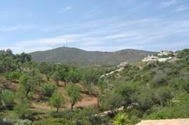 Uitzicht vanaf het terras op de Monte Sao Miguel