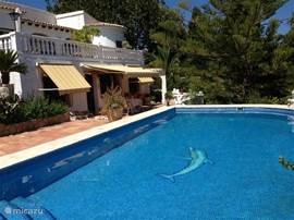 Heerlijk ruim Zwembad met buitendouche (nu niet op foto zichtbaar) en daarachter de woning met terras en luifels.