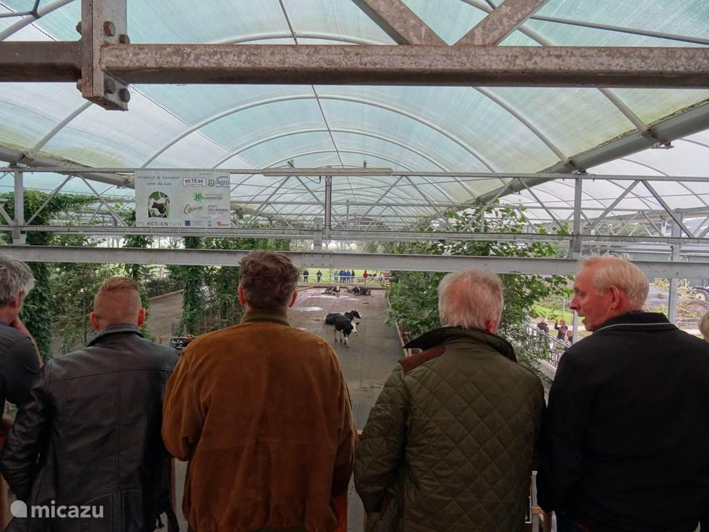 De 1e #Koeientuin in Nederland staat op ons erf, kom zelf ook een kijkje nemen.