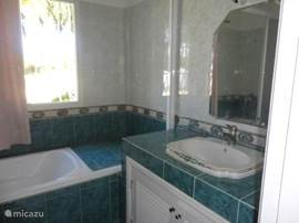 Badkamer beneden met douch