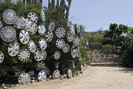 hubcaps hedge
