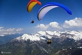Paragliding duo flights
