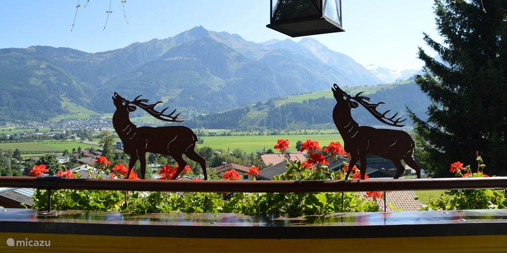 Uitzicht Landhaus Kitzblick