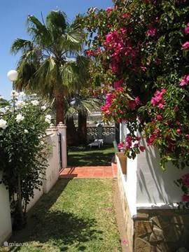 bloeiende struiken om het huis. De tuin is geheel ommuurd dus veilig voor kinderen.
