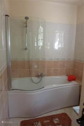 bathroom adjoining bedroom